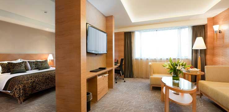 Flat screen TV on hotel room wall